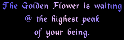 The Golden Flower is waiting @ the highest peak of your being